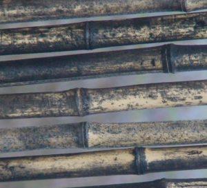 Sichtschutzelemente aus Bambus - Schimmelbildung